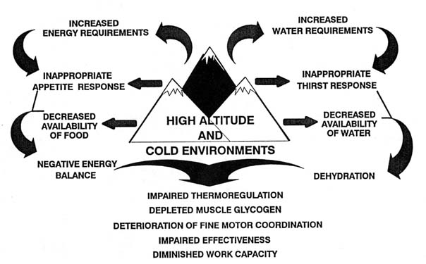 Nutrition-in-high-altitude-and-cold-weather